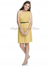 Maize Zipper One-Shoulder Sleeveless Natural Column/Sheath Short-length Sash Chiffon Daffodil Bridesmaid Dress