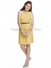 Maize Zipper One-Shoulder Sleeveless Natural Column/Sheath Short-length Sash Chiffon Daffodil Bridesmaid Dress