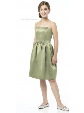 Spaghetti Sage Strapless Straps A-line Junior Bridesmaid Dresses