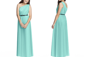 Junior Bridesmaid Dresses Banner